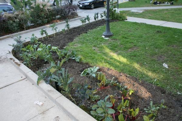 Equity Garden