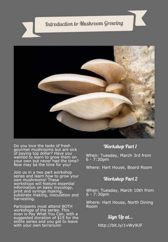 Mushroom Growing Workshop 2015